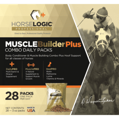 Muscle Builder Plus